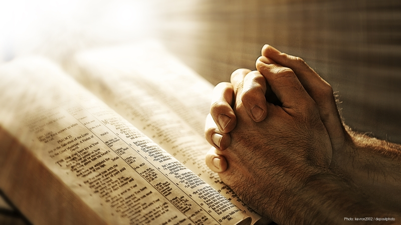 Mans hands praying on Bible
